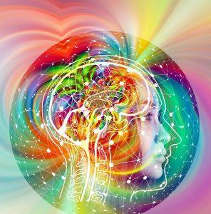 brain-4490836_1920